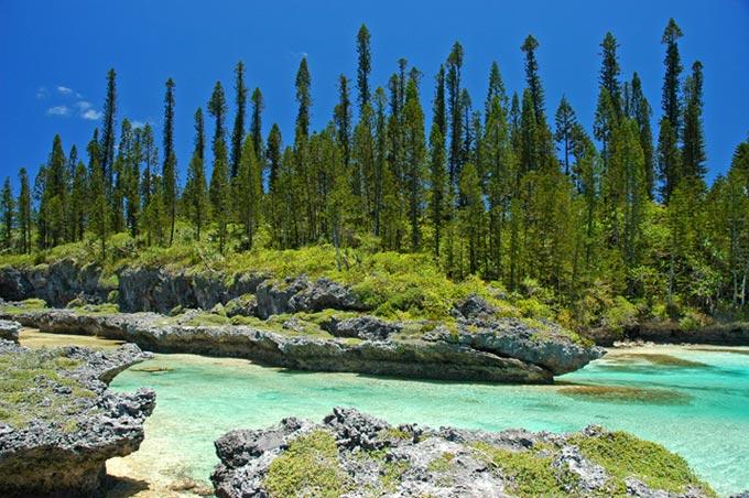 île de pins